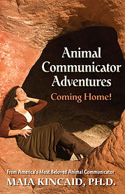 Coming Home-Cover-2x3.jpg
