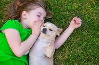 Animal Communication World a.jpg