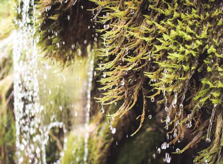 Rapport d'exploration N°4 - La Cascade