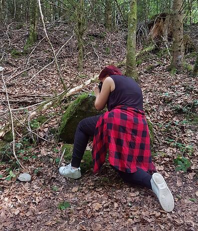 forêt à propos (2).png