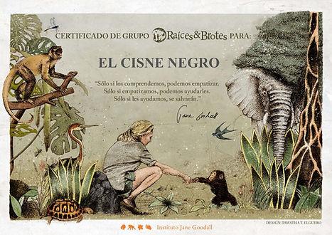 El cisne negro voluntarios roots and sho