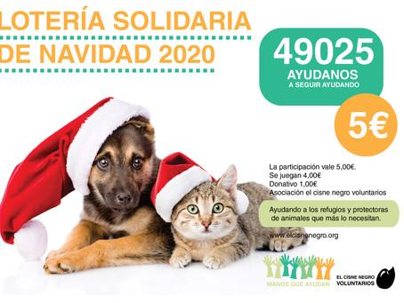 Lotería solidaria de Navidad 2020