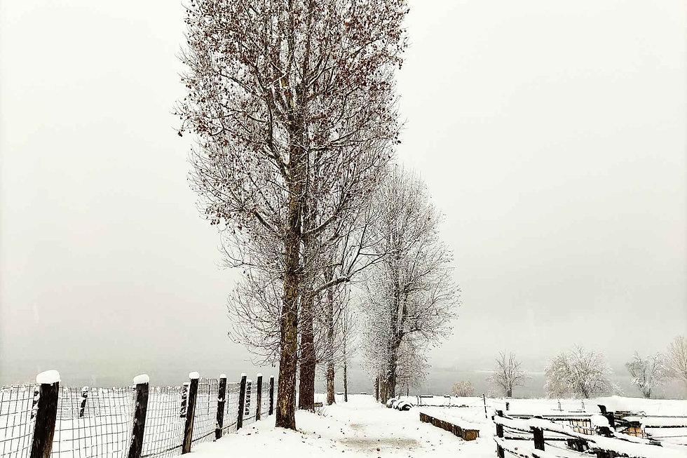 agriturismo-fattoria-gaggio-neve-intro.j