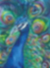 Peacock-2.jpeg