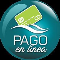 Boton-de-pago-en-linea.png