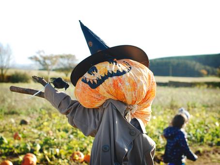 Pumpkin Adventures
