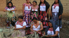 Market Ready Trial Implementation in Oaxaca