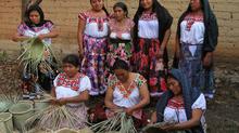 Market Ready Trial Implementation in Oaxaca