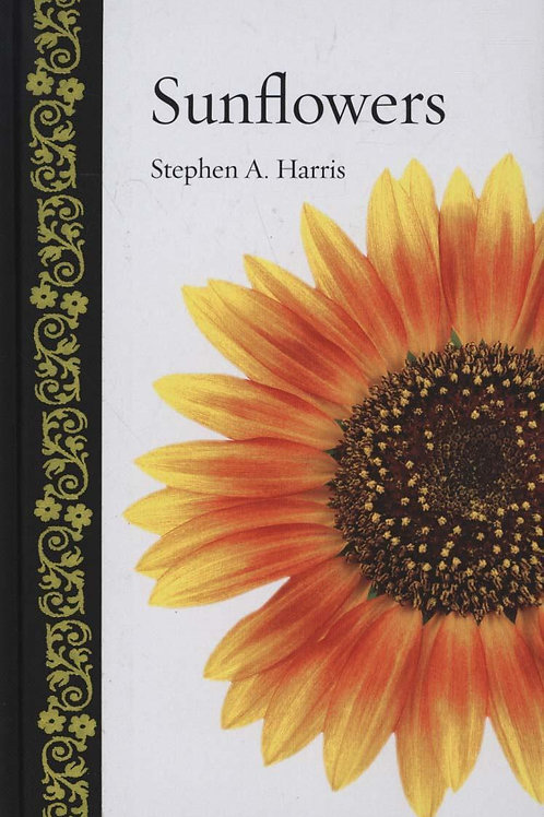 Sunflowers Stephen A Harris