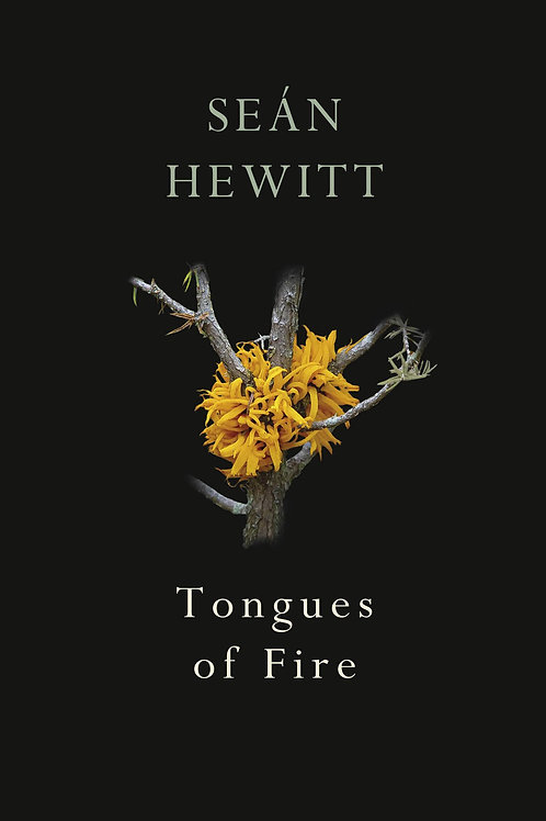 Tongues Of Fire Se�n Hewitt