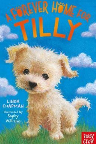 Forever Home For Tilly Linda Chapman