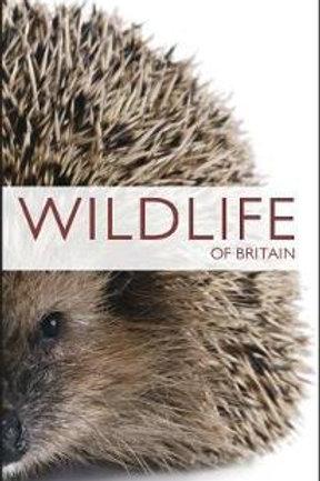 RSPB Pocket Nature Wildlife Of Britain  ,