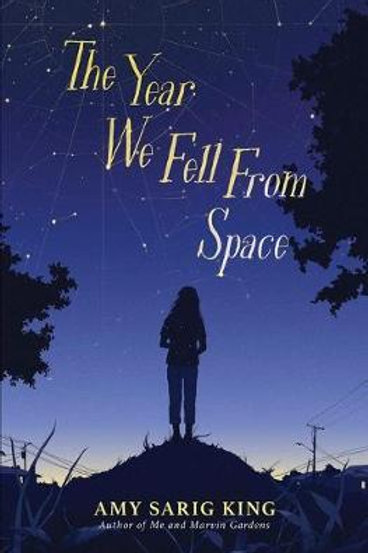 Year We Fell From Space King Amy Sarig