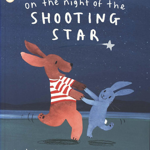 On The Night Of The Shooting Star Amy Hest