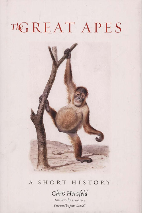 Great Apes A Short History Chris Herzfeld