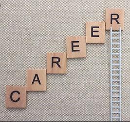 career ladder - Copy.JPG