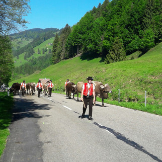 Granfondo ins Appenzellerland
