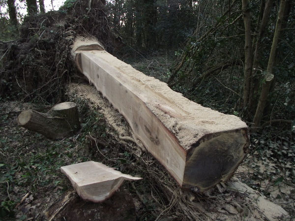 Milling Oak Beam
