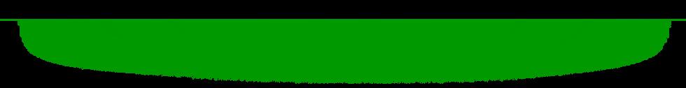 green-divider-line.png