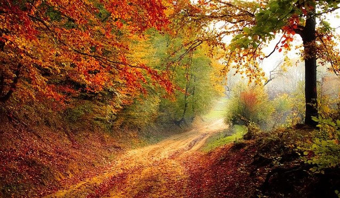 road-1072823_640.jpg