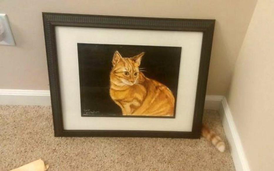 Cat120.jpg