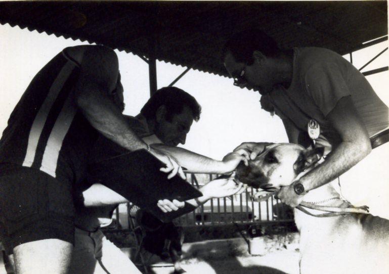 Show Kfar Truman 1979 - 004