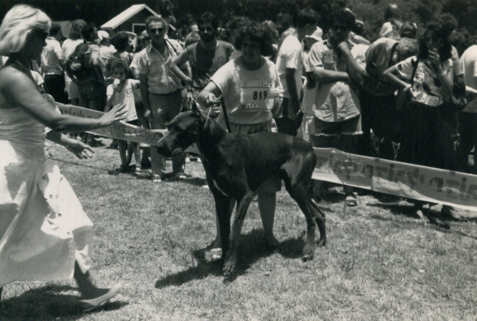 1987 World Dog Show- 002