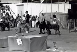 1987 World Dog Show- 001