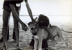 Show Kfar Truman 1979 - 002