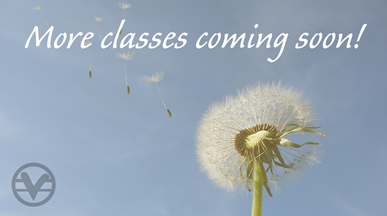 CLASSES SOON WIDE 04042021 .png