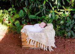 newborn-105.jpg