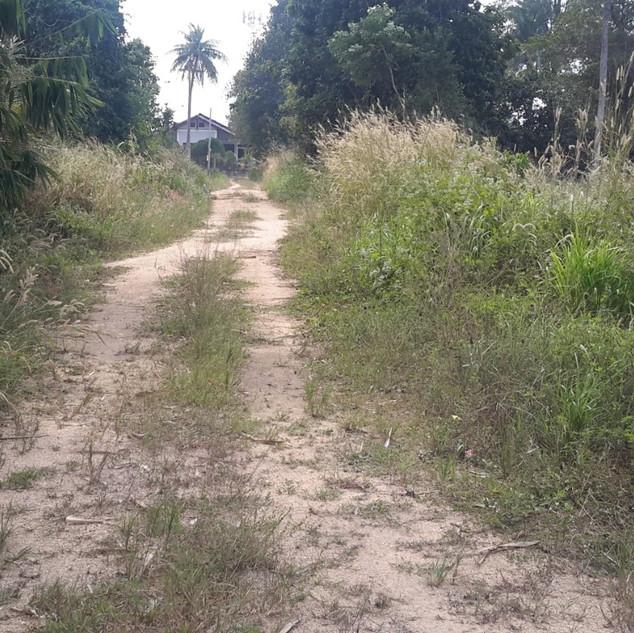 2 Rai Land for Sale (9).jpg
