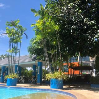 Pool (12).jpg