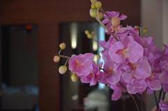 Pratumnak 23 Room Resort Sale (21).jpg
