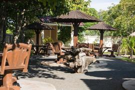 4 Rai Plus Tropical GardenRestaurant (22