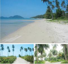 Koh Samui Land (5).jpg