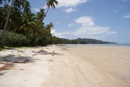Koh Samui Land (2).jpg
