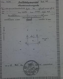 Land (7).jpg