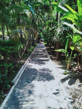 Potential Resort (16).jpg