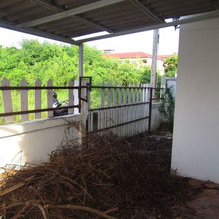 House to Renovate (14).JPG