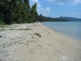 Koh Samui Land (15).jpg