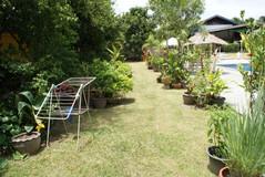 Resort Lake Mabprachan (35).jpg