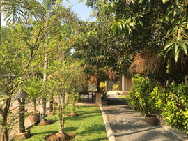 4 Rai Plus Tropical GardenRestaurant (15