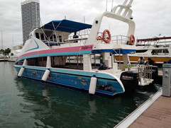 Discounted Catamaran (8).jpg