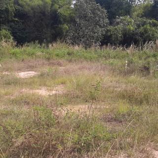 2 Rai Land for Sale (3).jpg