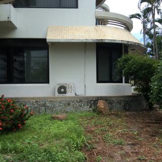 Beach Front House plus plot (4).JPG