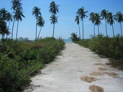 Koh Samui Land (11).jpg