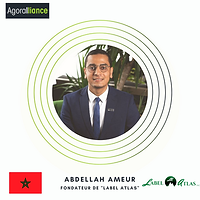 Abdellah Ameur.png