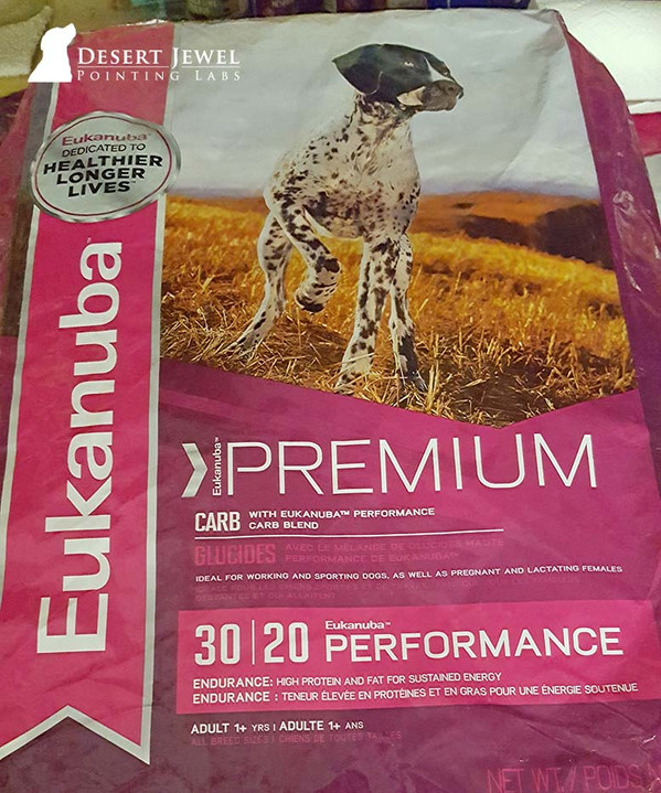 Premium dogg food