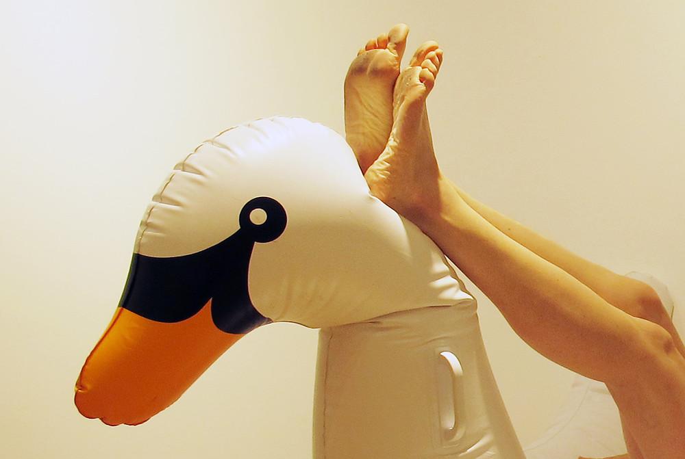 swan legs lores.jpg